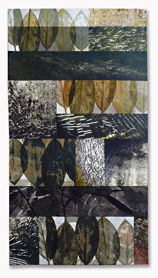The Geometric Organization of Nature, quilt by Michael James