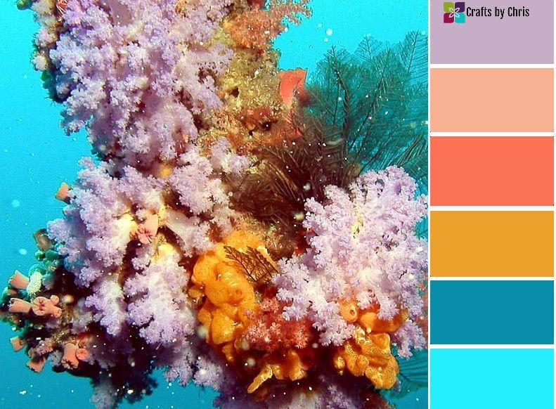 Monday Motivation Color Palette 158 Color Palettes Color