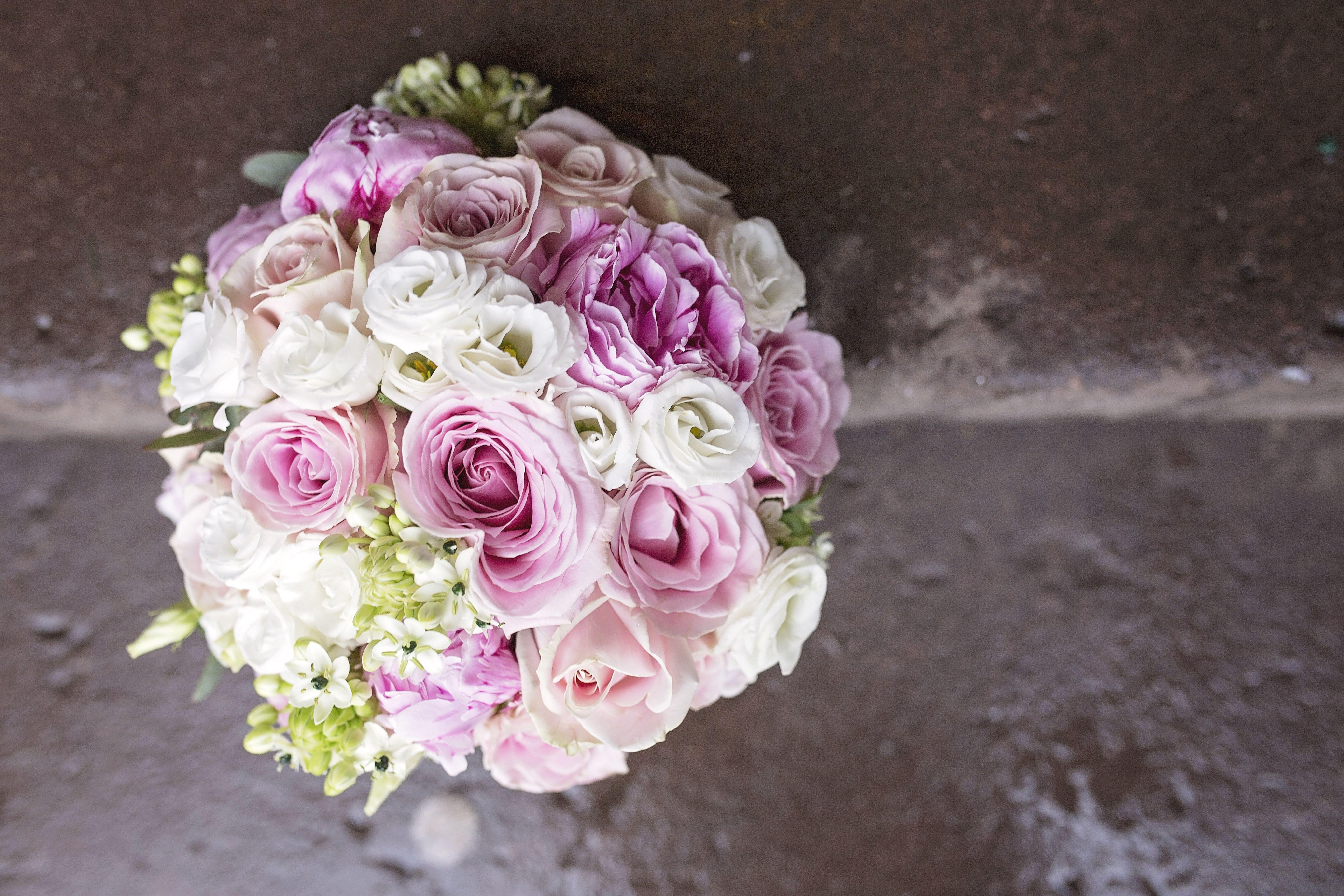 Peckforton Castle Wedding Family Photographer Cheshire - Jess ...