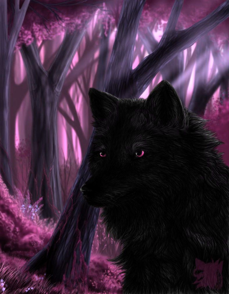 Black wolf with Pink Eyes | Black + Pink | Pinterest ...