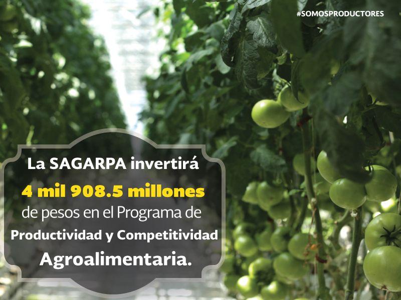 La SAGARPA invertirá cuatro mil 908.5 millones de pesos en el Programa de Productividad y Competitividad Agroalimentaria. SAGARPA SAGARPAMX #SomosProductores