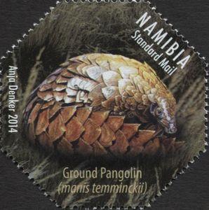 Ground Pangolin (Manis temmincki)