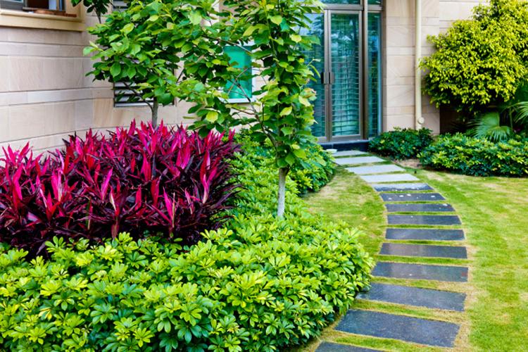 Idées daménagement jardin sans entretien -conseils utiles