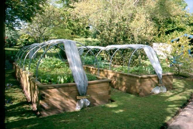 Raised Bed Garden Layouts Cheap Ideas For Raised Garden