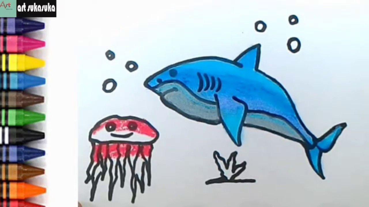Cara Menggambar Dan Mewarnai Ikan Hiu Dan Ubur Ubur Dengan Gambar