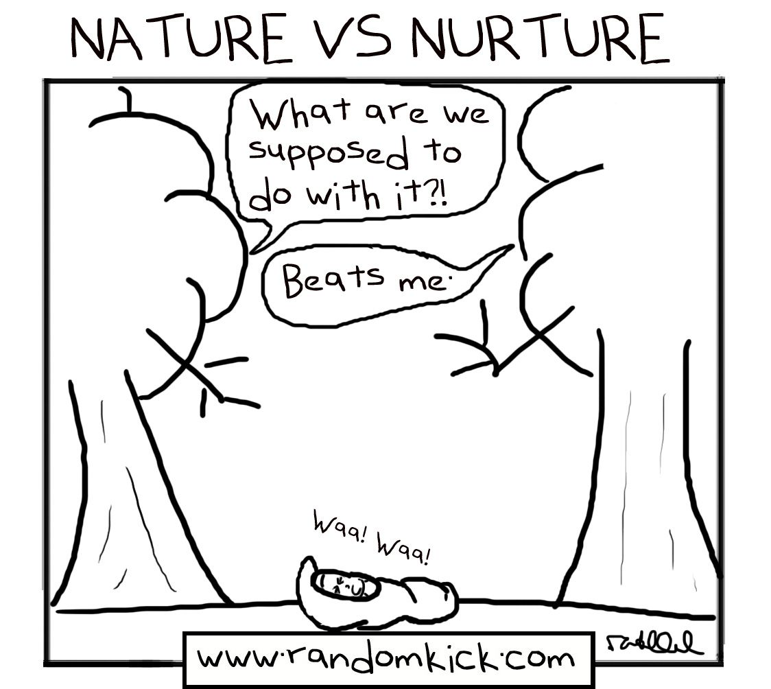 comic take on nature vs nurture debate prelim depth study  comic take on nature vs nurture debate prelim depth study personal and social identity