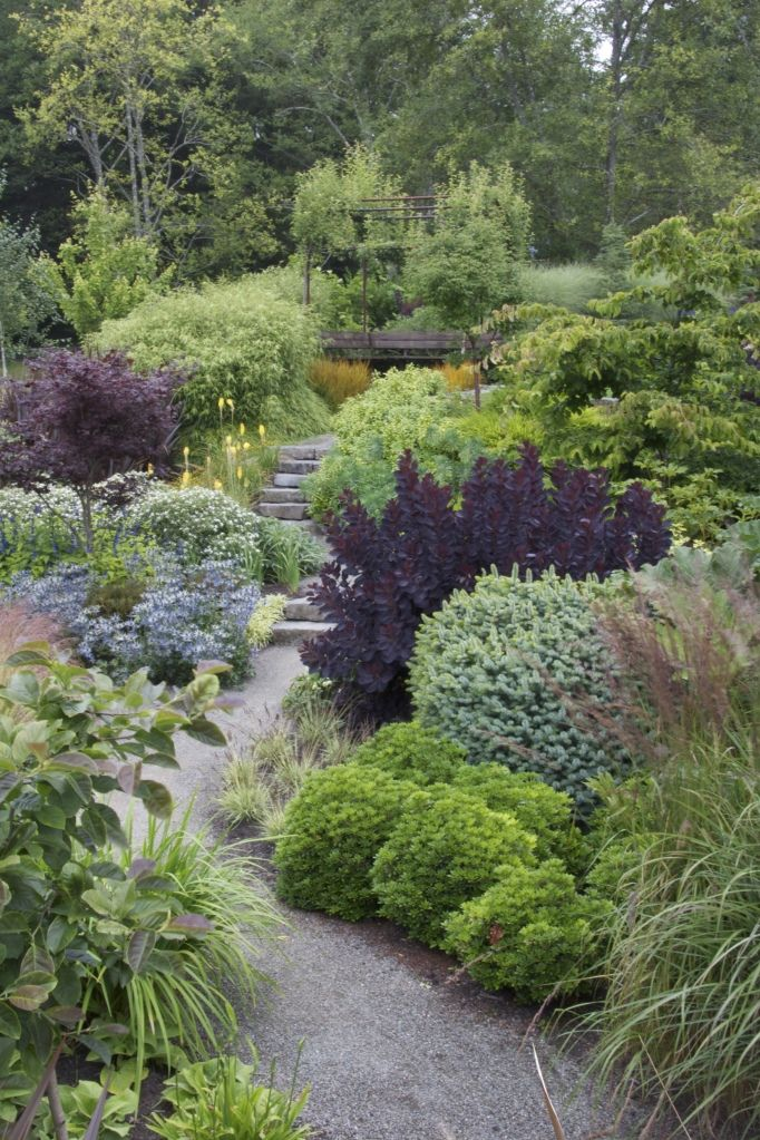 Photo of Layering around path with purple foliage to lead you down the path.