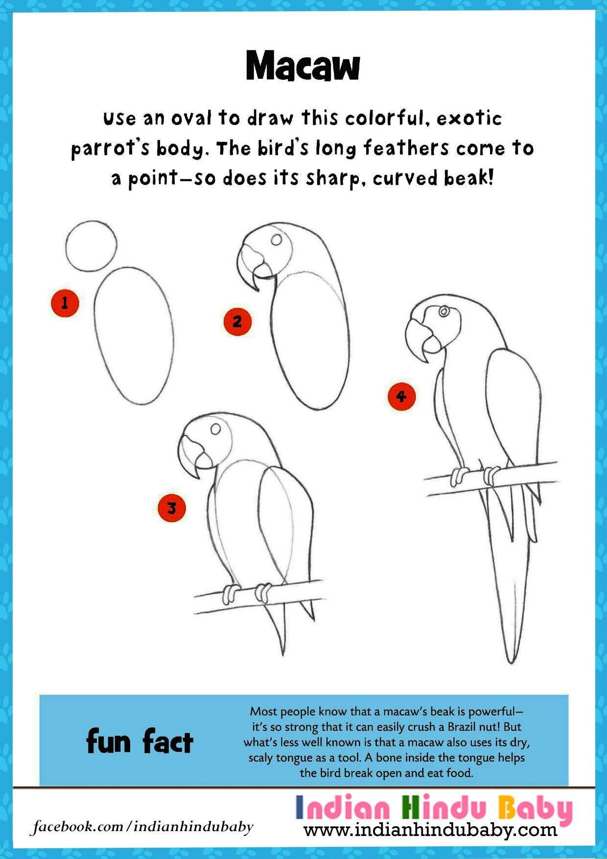 art for kids how to draw a parrot craft activities and