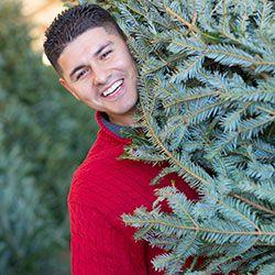 5 No-Skip Tips to Keep Your Christmas Tree Fresher Longer