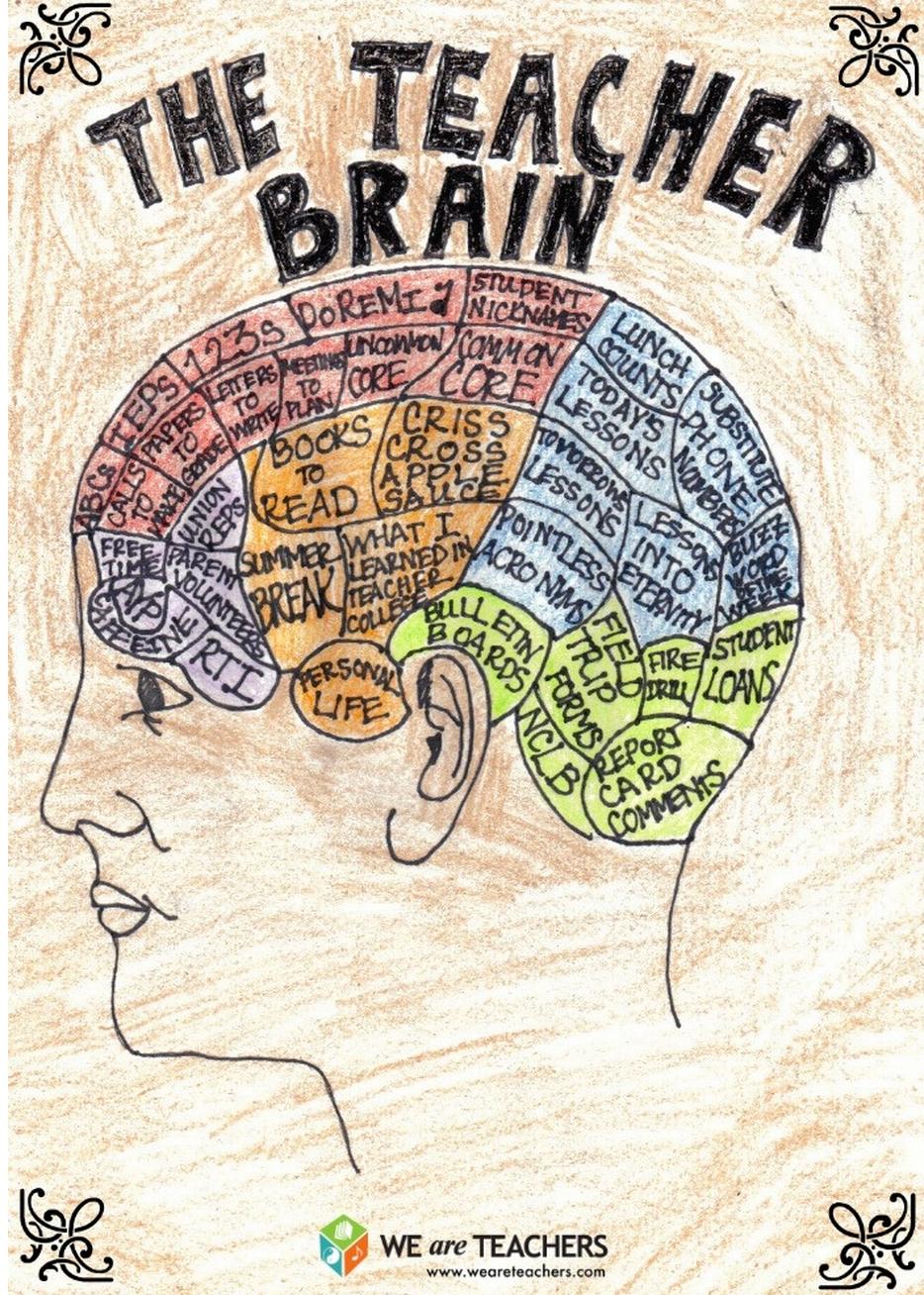 Anatomy of Teachers\' Brain | Humor | Pinterest | Mobile learning ...