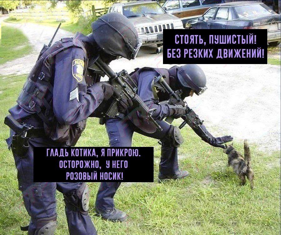 Прикольные картинке про спецназ