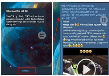 Cara Download Video Tiktok Di Telegram,cara download tiktok tanpa watermark di telegra,Cara Download Video Tiktok Di Telegram tanpa watermark,download video tiktok di telegram