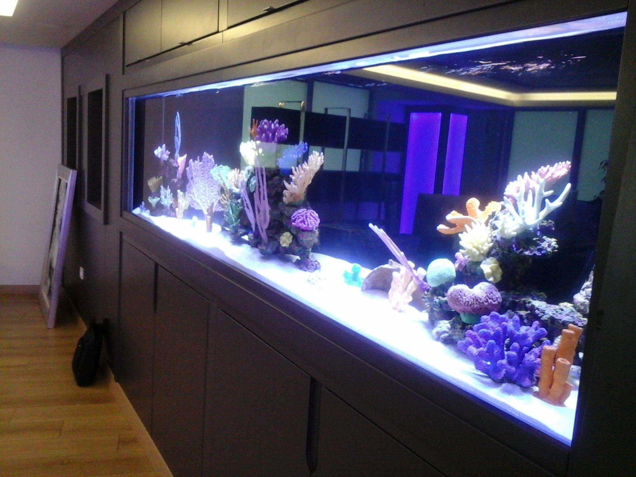 4e35d893df5c9a5e0de0c87020a07d0e Frais De Aquarium Avec Meuble Schème