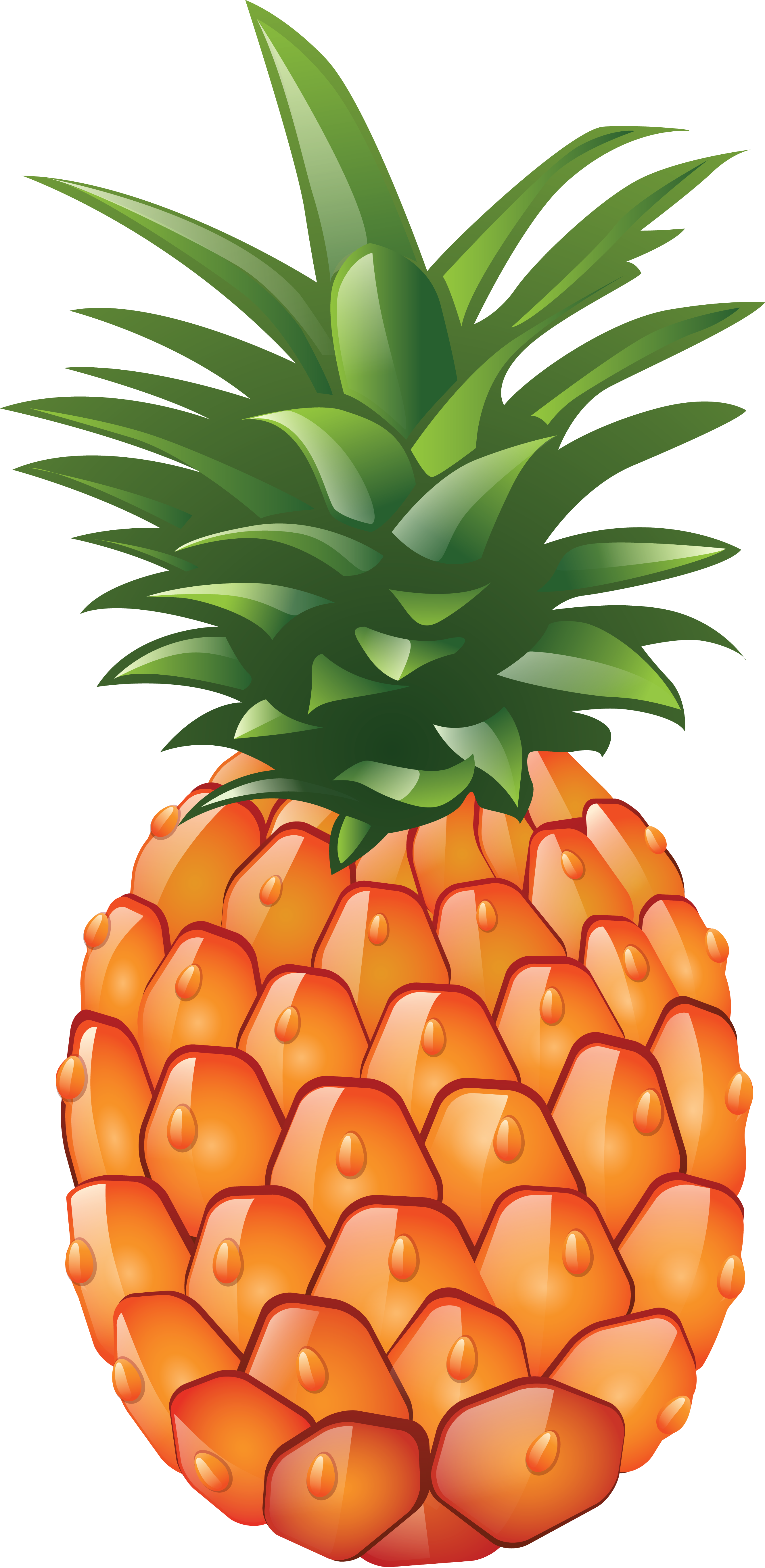 Pineapple Png Image Free Download Pineapple Images Pineapple Pineapple Parties