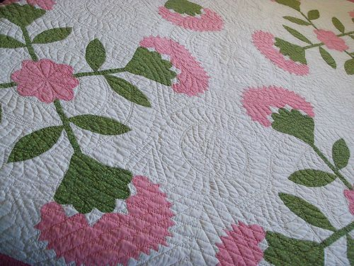 Antique Applique Pink and Poison Green 'Coxcombs'