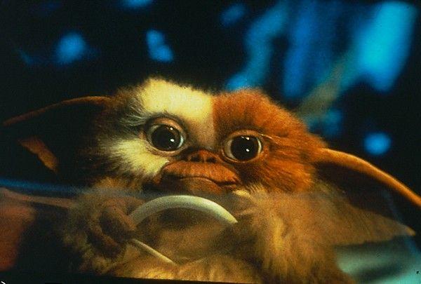 Gremlins...whatever you do don't get them wet;) | Gremlins, Horror movie  art, Horror films