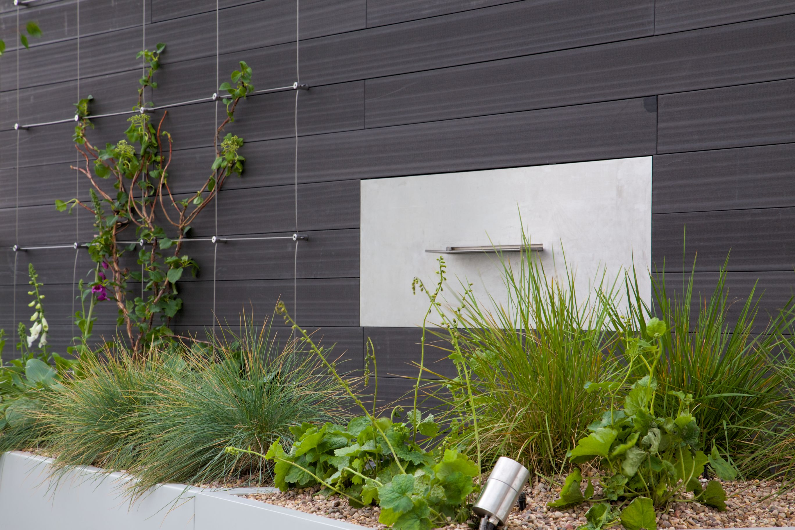 Green Wall Wire Trellis System | Tensioned Wire Systems | Pinterest ...