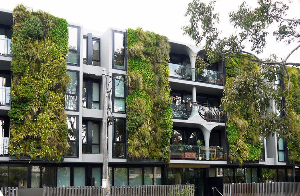 Vertical gardens hanging garden facade design facade - Building a living wall ...