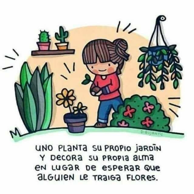 Pin de Marisol Hernandez en frases que motivan | Frases de cactus, Regalar plantas, Imagenes de plantas