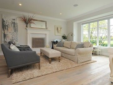 Wall Color Is Benjamin Moore Silver Satingorgeous Light Light Extraordinary Living Room Wall Colors Decorating Inspiration