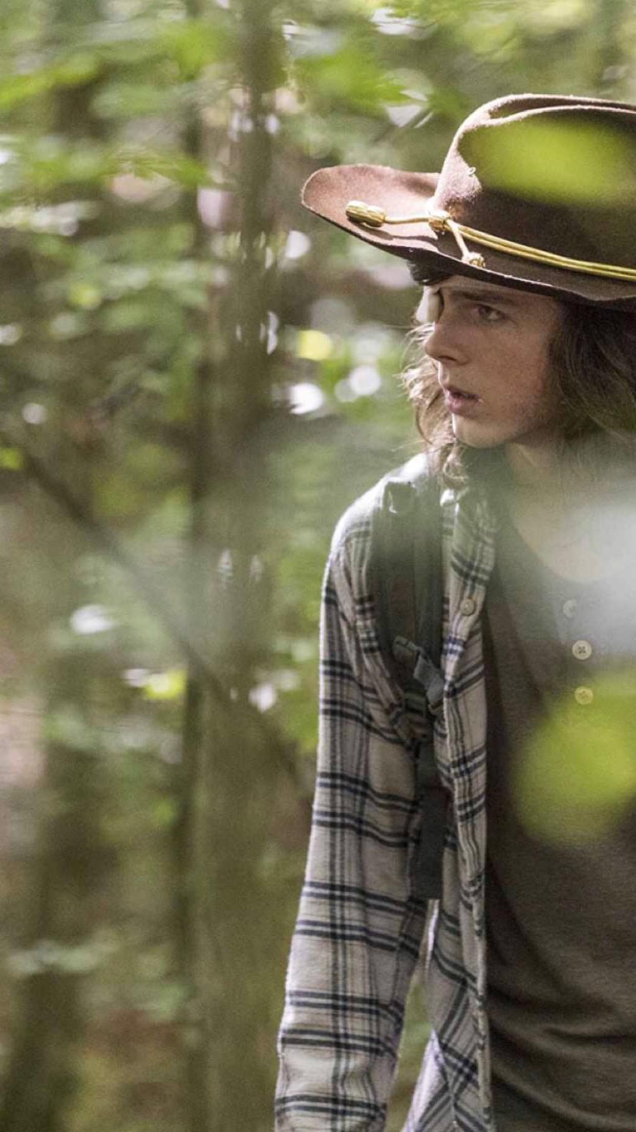 The Walking Dead Carl Grimes ( Chandler Riggs )