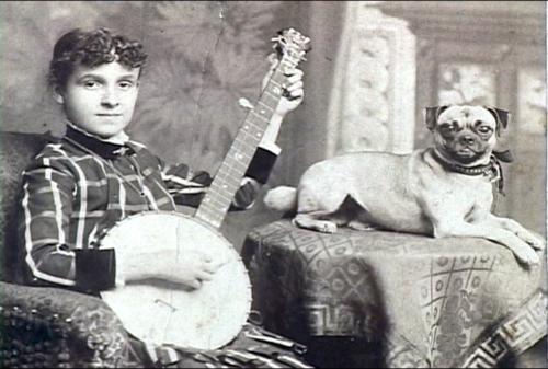 19th Century Babylon Baroque Pugs Pug Photos Pugs Funny