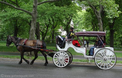 central park horse carriage new york cause it makes me feel like royalty to be pulled in a. Black Bedroom Furniture Sets. Home Design Ideas