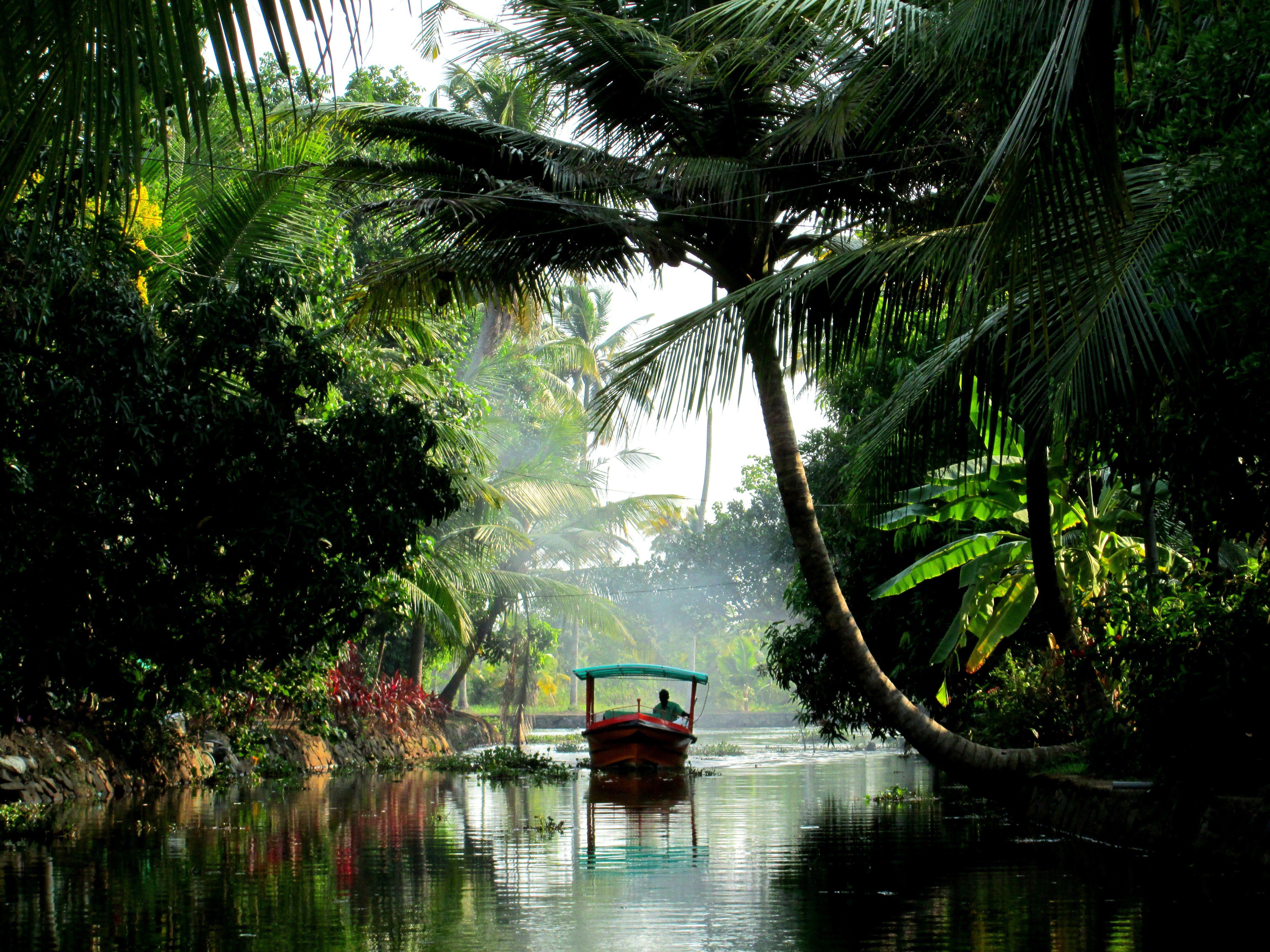 PARADISE ON KANOE IN KUMARAKOM Outdoor, Outdoor decor, Decor
