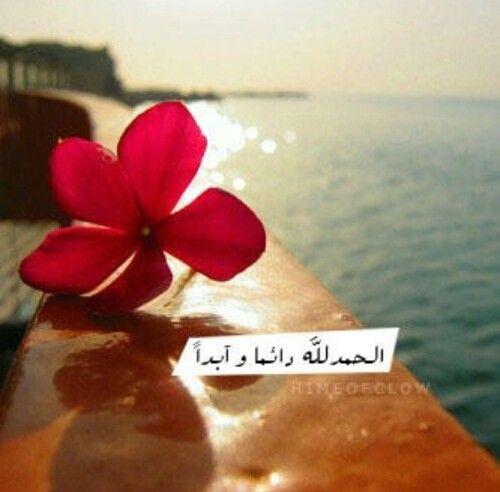 الحمد لله دائما وابدا Flowers Farah I Feel Free
