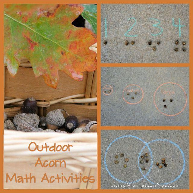 Rekenen met eikels - bekijk de ideeën voor deze herfst