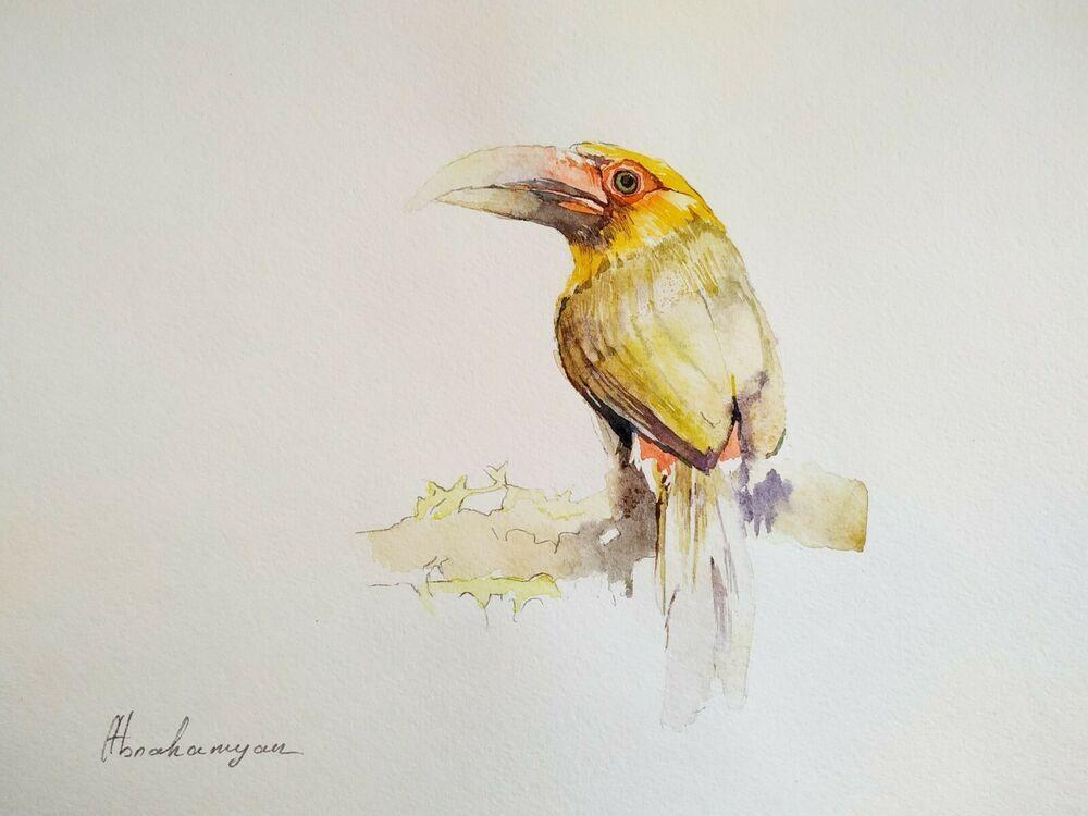 Hornbil, Birds, Watercolor artwork, Handmade, Original painting on paper #Realism