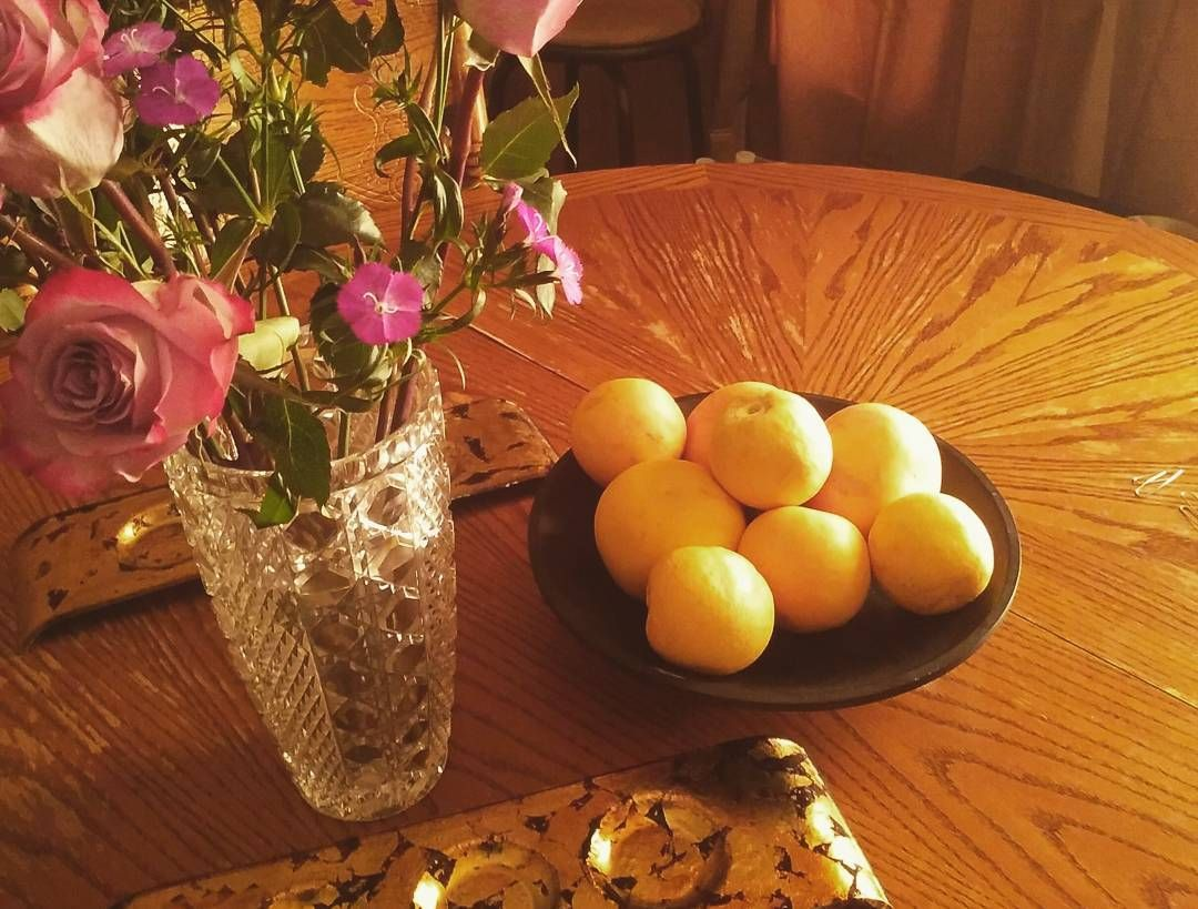 Why do I have a picture of flowers grapefruit candle holders and paper clips? I don't know.  #Random #ImBored #NotReally #JustProcrastinating #IHaveALotOfWorkToDo #IShouldDoItRightNow #ButImHungryThough