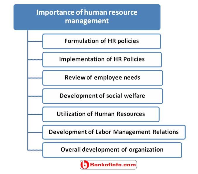 Importance Of Human Resource Management  Human Resource