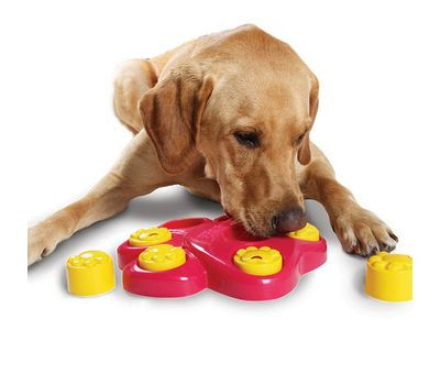 Petsgonuts Multi Functional Paw Shaped Puzzle Bowl Feeder Dog Toy