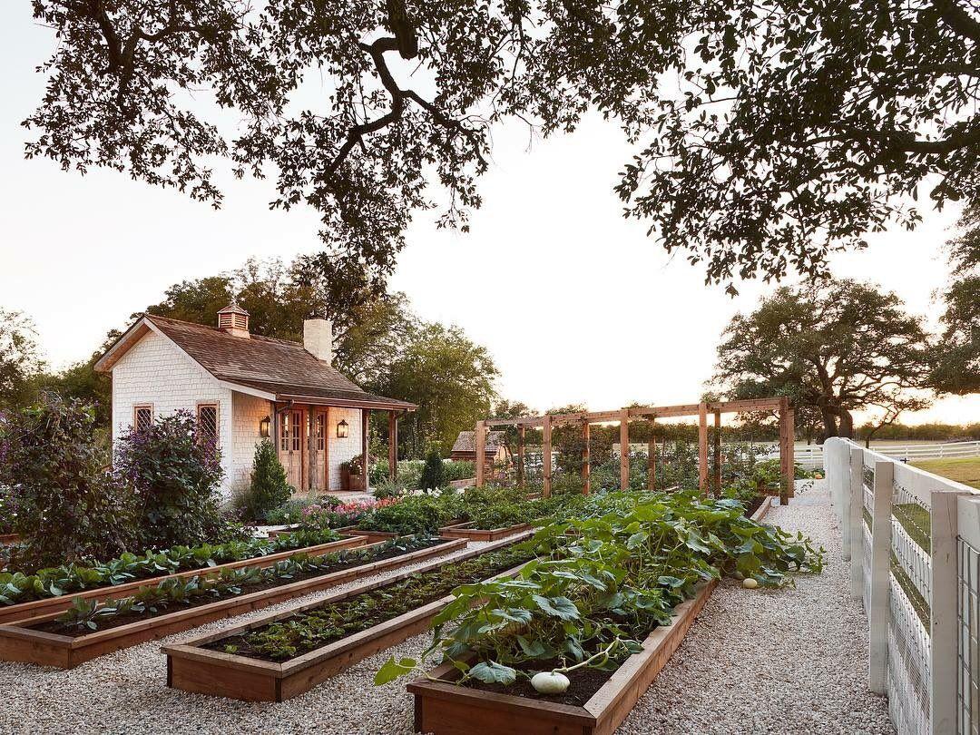 Download Related image   Farmhouse garden, Family garden, Joanna ...