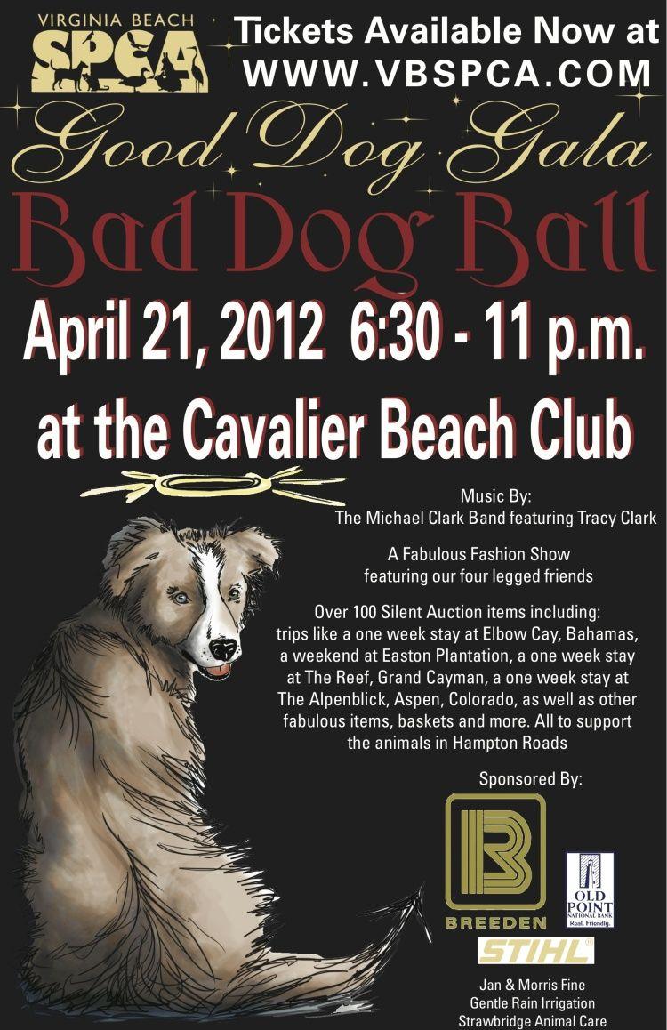 Train Your Dog Fast Http Dogtraining 6vmpk17g Reviewsatbest Com Bad Dog Animal Rescue Fundraising Virginia Beach
