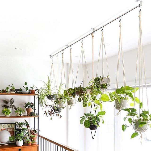 Charming Hanging Plant Ideas 43 Charming Hanging Plant Ideas - With winter just around the corner for many people, it is time to seriously start thinking about bringing the outdoor garden into your home. There is ...43 Charming Hanging Plant Ideas - With winter just around the corner for many people, it is time to seriously start thinking about bringing the outd...