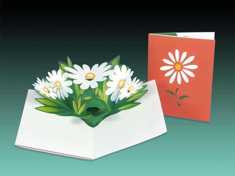 Daisy Pop Up Card Pop Up Cards Daisy Cards Pop Up Greeting Cards