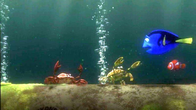 Finding Nemo Crab Scene