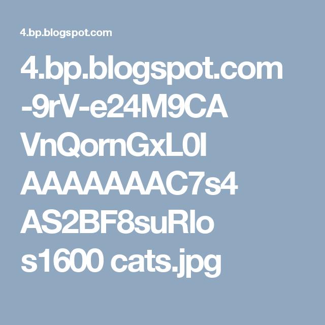 4.bp.blogspot.com -9rV-e24M9CA VnQornGxL0I AAAAAAAC7s4 AS2BF8suRlo s1600 cats.jpg