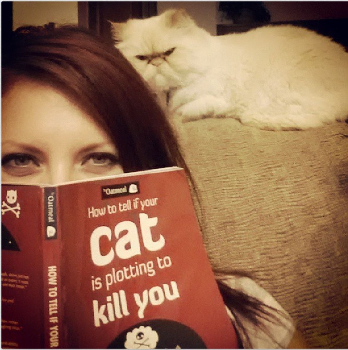 The purrfect book to read if you have a cat with world domination issues... lol from The Shirk Report – Volume 236 «TwistedSifter. Gives over the shoulder reading a new concept!