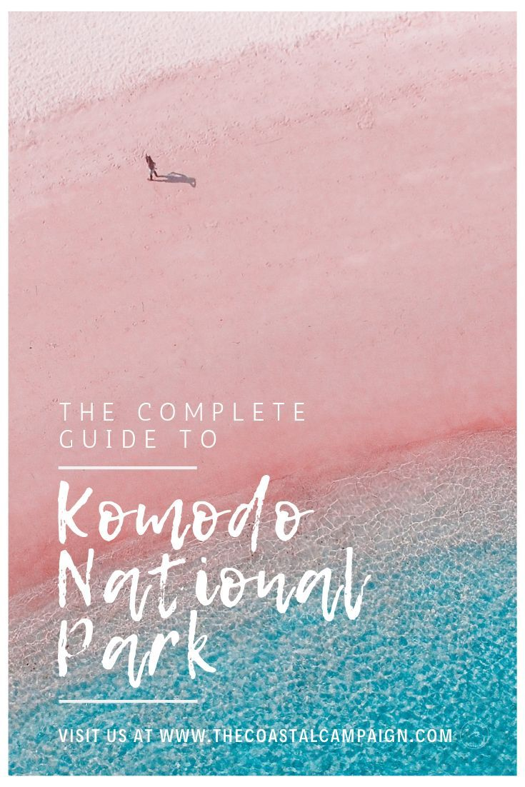 The Complete Guide to Komodo National Park | Planning your trip to Komodo and Flores | Where to stay and what to do | The Coastal Campaign