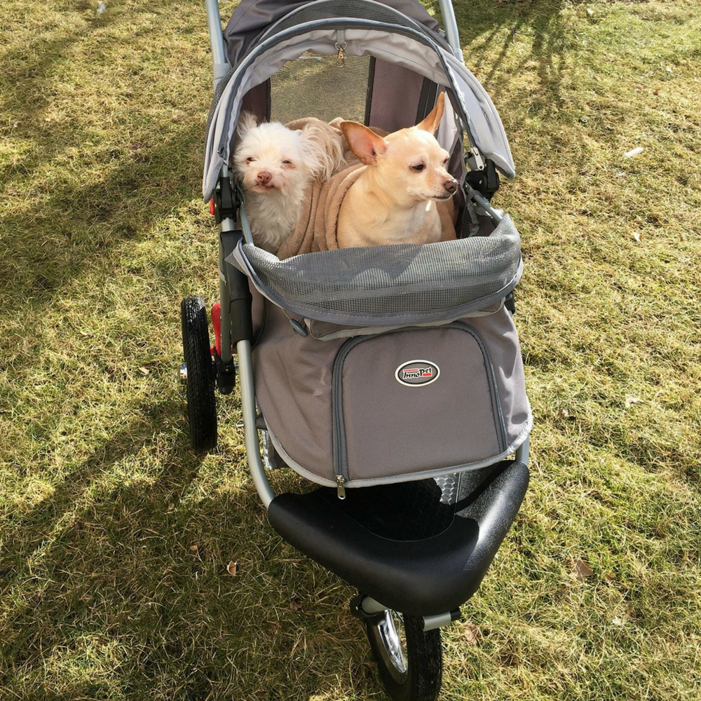 Pet Stroller Buggy Comfort AIR by Innopet (With images