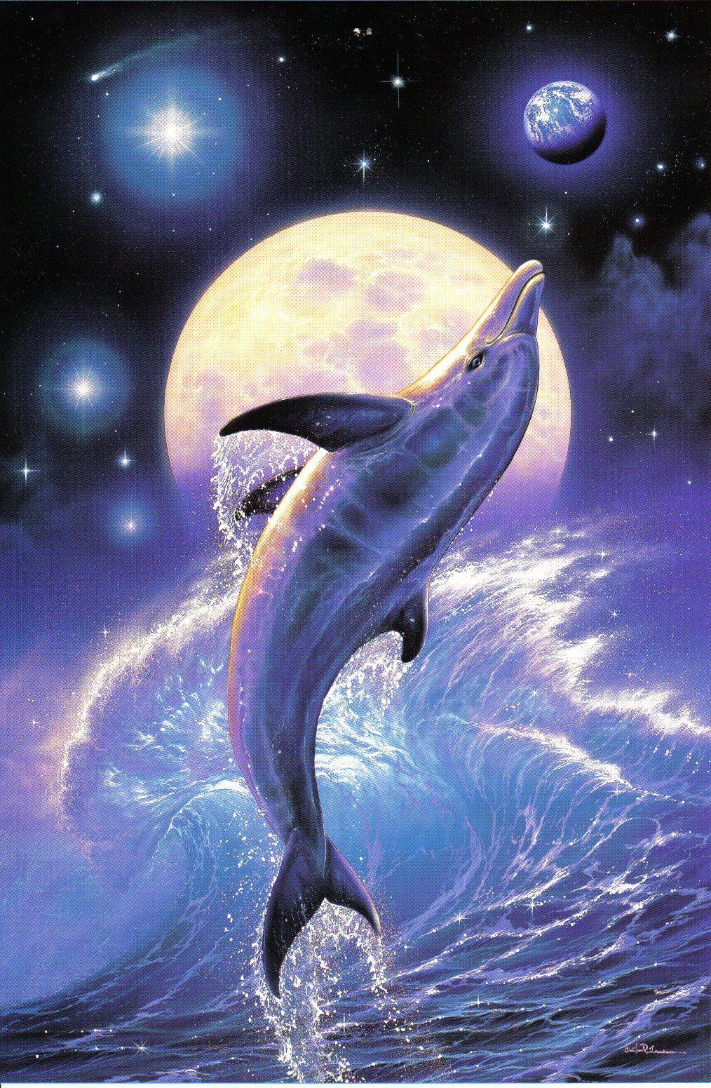 dolphin <3   картинки для декупажа   Pinterest   Delfines, Vida ...