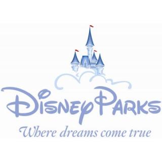 Disney Parks Disneyland Disneyworld Disney World Trip Disney World Park Hopper Walt Disney Parks