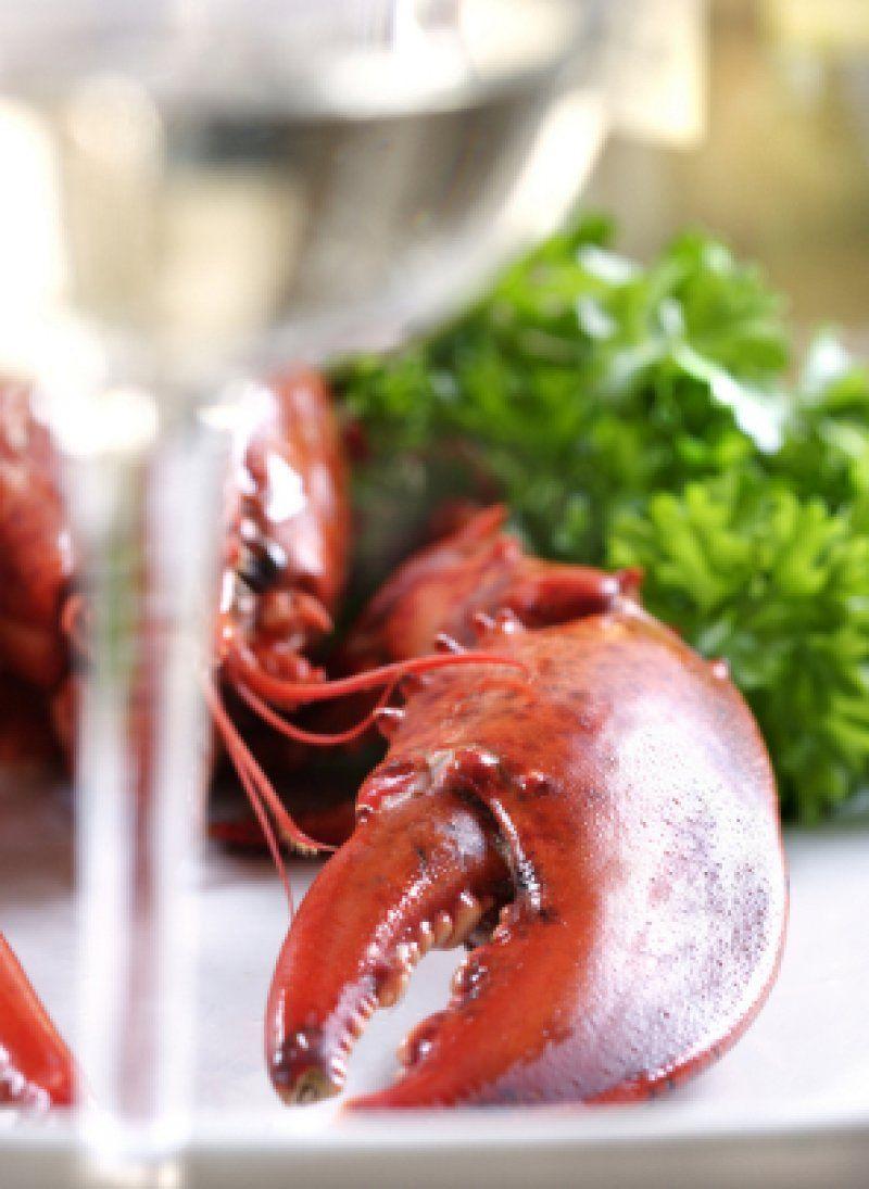 Kogt hummer naturel. | Lækker opskrift | Find den på Maduniverset