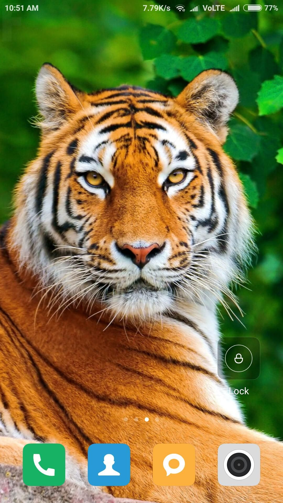 Tiger Wallpaper Home Screen Animals Wallpapers Ideas In 2020