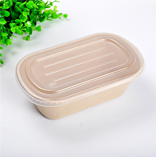 Source Trade Assurance Eco Friendly Biodegradable Corn Starch Food Container Disposable Lunch Bo Biodegradable Products Food Containers Disposable Lunch Boxes