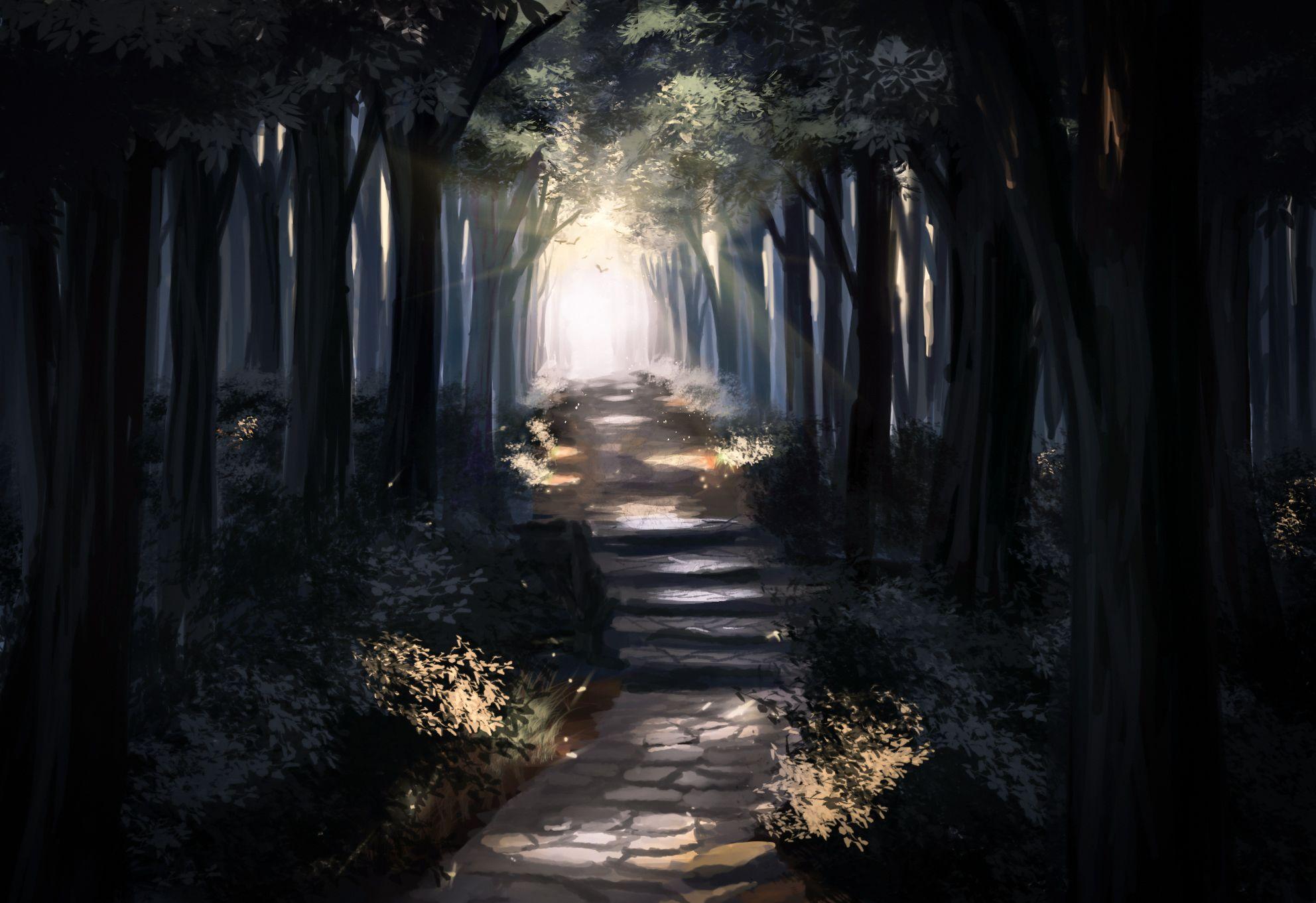 Sylar113, Foresta, No Carattere, Raggio di sole, natura