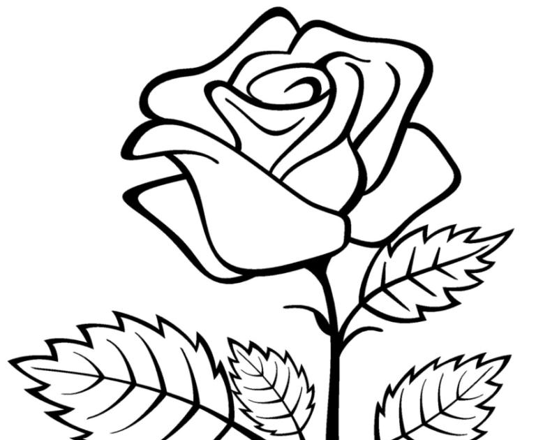 Paling Populer 13 Gambar Sketsa Bunga Rose 39 Gambar Sketsa Bunga Indah Sakura Mawar Melati Bunga Mawar Contoh Gambar Mewarnai Di 2020 Tato Suku Bunga Lukisan Bunga